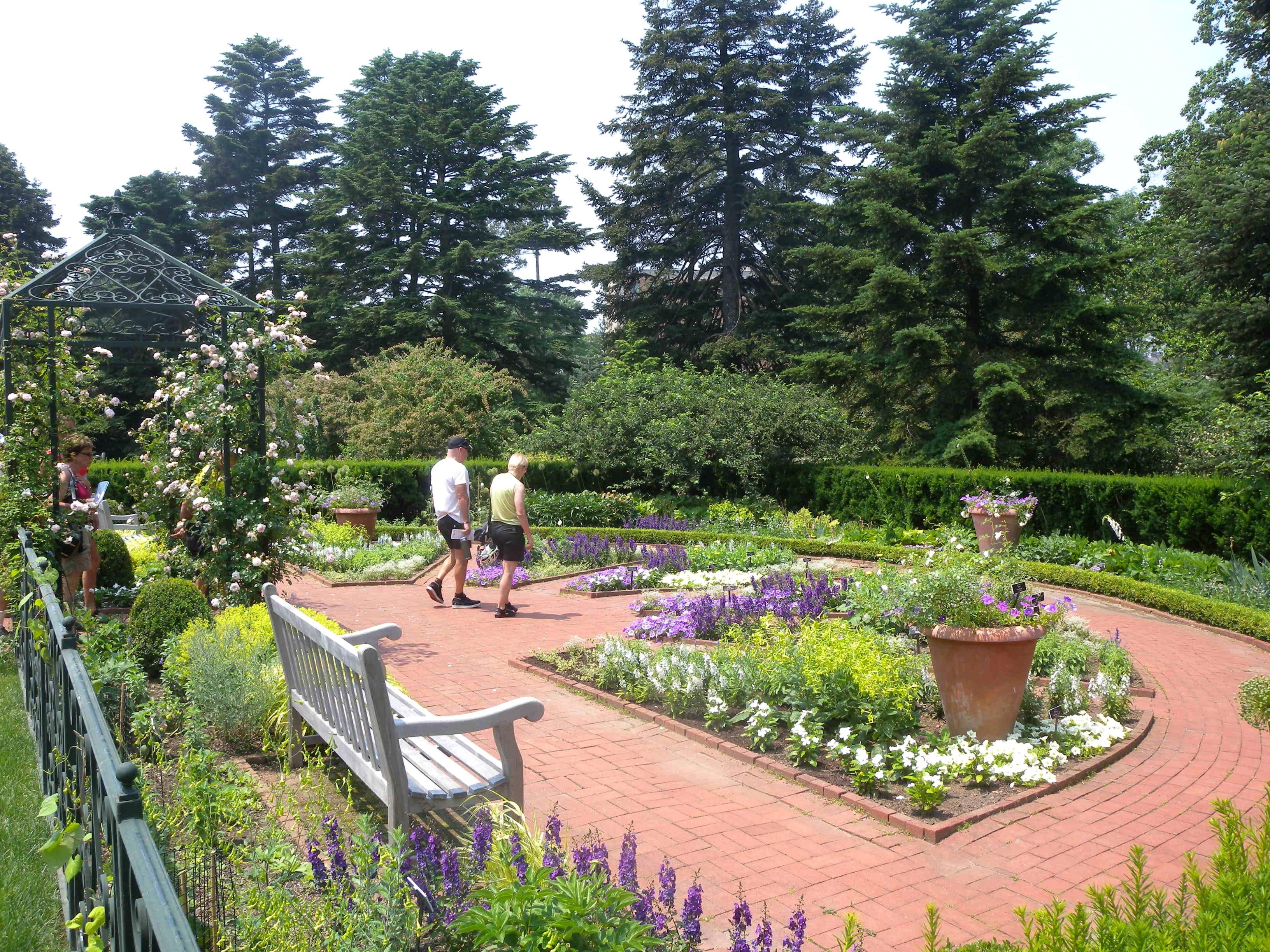 Mae_Wien_Summer_Garden_NYBG_jeh