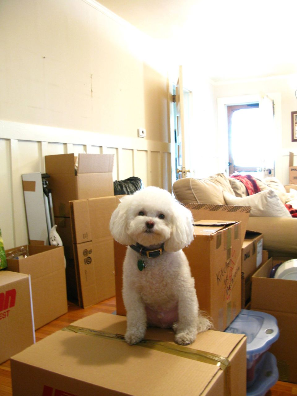 Preparing Your Child for a Move can be more difficult than you might anticipate